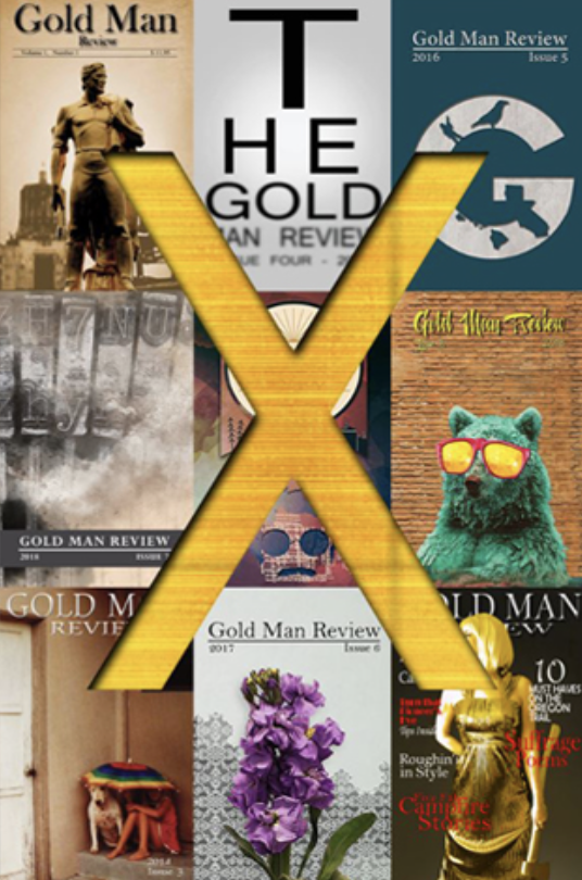 goldmanreviewcover